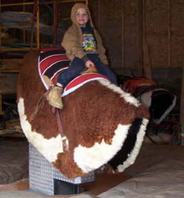 Photo little boy riding mechanical bull